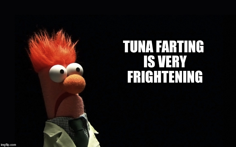 TUNA FARTING IS VERY FRIGHTENING | made w/ Imgflip meme maker
