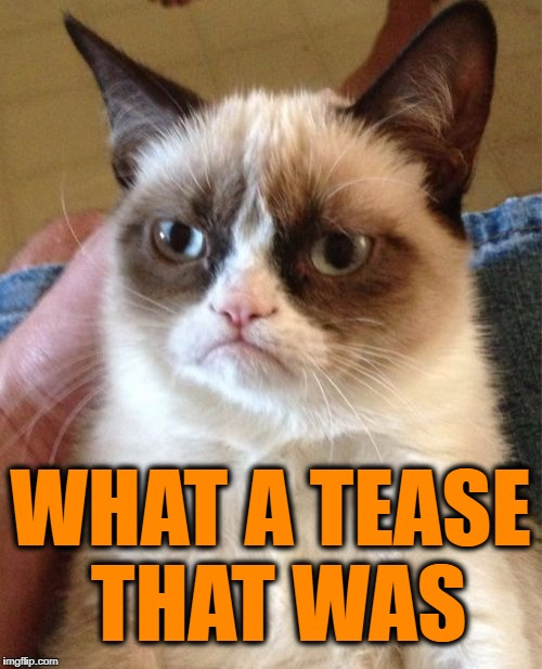 Grumpy Cat Meme | WHAT A TEASE THAT WAS | image tagged in memes,grumpy cat | made w/ Imgflip meme maker