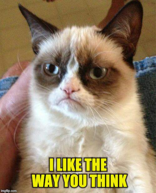 Grumpy Cat Meme | I LIKE THE WAY YOU THINK | image tagged in memes,grumpy cat | made w/ Imgflip meme maker