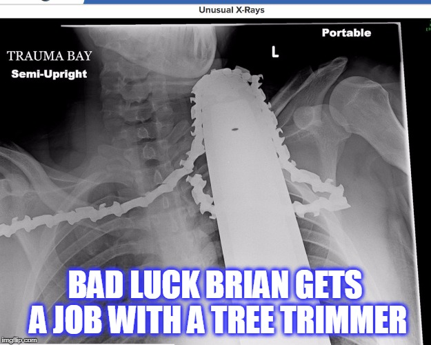 BAD LUCK BRIAN GETS A JOB WITH A TREE TRIMMER | image tagged in chainsaw | made w/ Imgflip meme maker