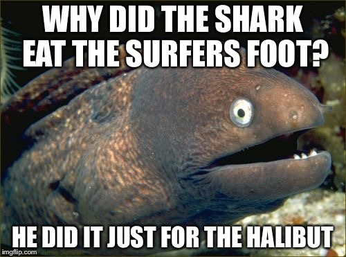 Bad Joke Eel Meme | WHY DID THE SHARK EAT THE SURFERS FOOT? HE DID IT JUST FOR THE HALIBUT | image tagged in memes,bad joke eel | made w/ Imgflip meme maker