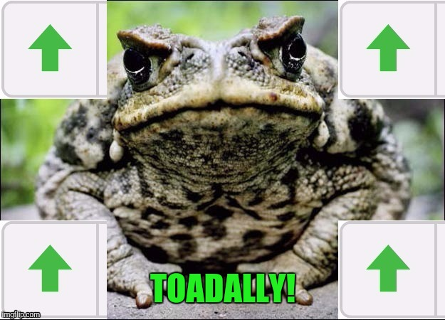 TOADALLY! | made w/ Imgflip meme maker