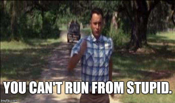 YOU CAN'T RUN FROM STUPID. | made w/ Imgflip meme maker