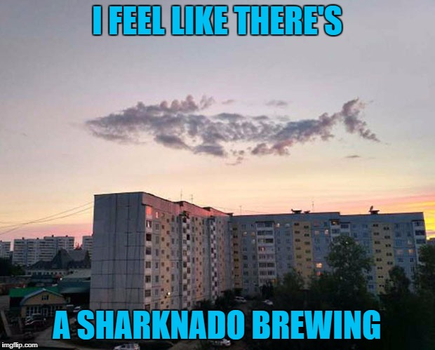 Must be lost without his fin... | I FEEL LIKE THERE'S A SHARKNADO BREWING | image tagged in sharknado,memes,cloud shark,clouds,funny,shark | made w/ Imgflip meme maker