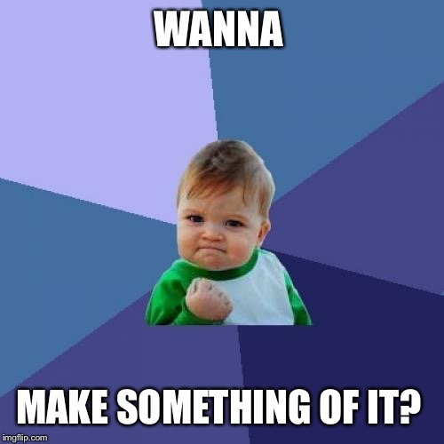 Success Kid Meme | WANNA MAKE SOMETHING OF IT? | image tagged in memes,success kid | made w/ Imgflip meme maker