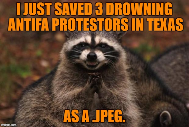 Hero. | I JUST SAVED 3 DROWNING ANTIFA PROTESTORS IN TEXAS AS A .JPEG. | image tagged in evil genius racoon | made w/ Imgflip meme maker
