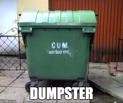 Cum dumpster | DUMPSTER | image tagged in dumpster,cum,funny,dark humor | made w/ Imgflip meme maker