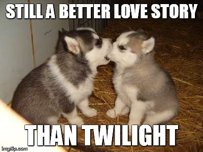Cute Puppies | STILL A BETTER LOVE STORY THAN TWILIGHT | image tagged in memes,cute puppies,still a better love story than twilight | made w/ Imgflip meme maker