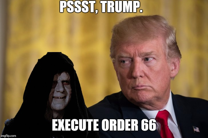 Darth sidious' apprentice  | PSSST, TRUMP. EXECUTE ORDER 66 | image tagged in donald trump,darth sidious,star wars | made w/ Imgflip meme maker