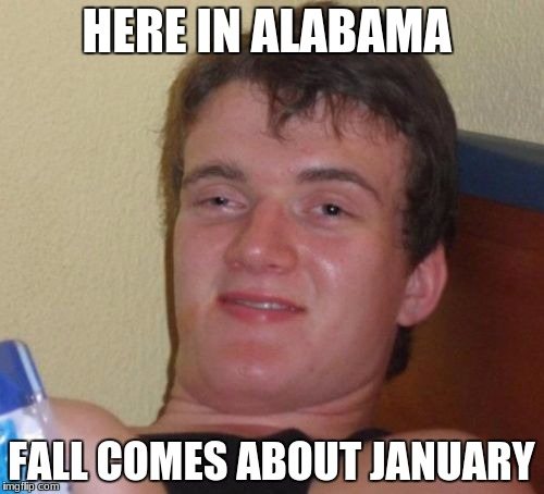 10 Guy Meme | HERE IN ALABAMA FALL COMES ABOUT JANUARY | image tagged in memes,10 guy | made w/ Imgflip meme maker