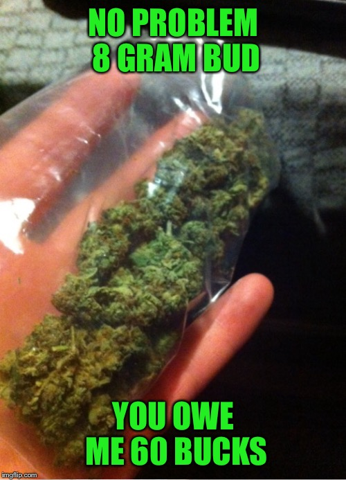NO PROBLEM 8 GRAM BUD YOU OWE ME 60 BUCKS | made w/ Imgflip meme maker