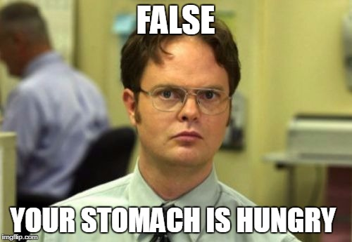 false | FALSE YOUR STOMACH IS HUNGRY | image tagged in false | made w/ Imgflip meme maker