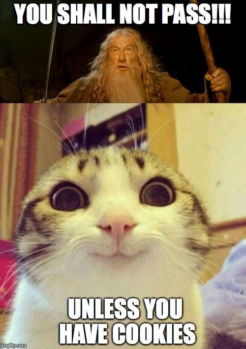 YOU SHALL NOT PASS!!! UNLESS YOU HAVE COOKIES | image tagged in gandalf,funny | made w/ Imgflip meme maker
