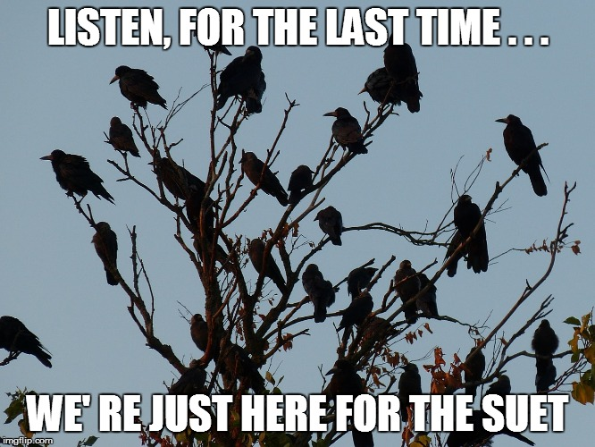 LISTEN, FOR THE LAST TIME . . . WE' RE JUST HERE FOR THE SUET | made w/ Imgflip meme maker