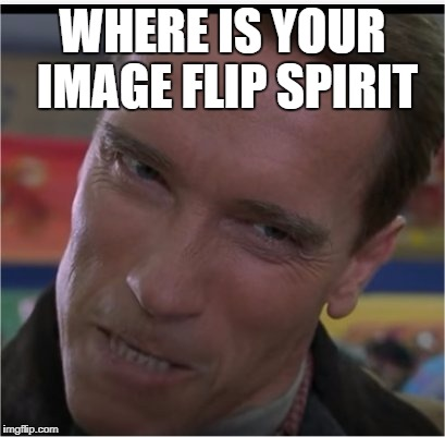 Thats better. | WHERE IS YOUR IMAGE FLIP SPIRIT | image tagged in memes,funny,college football,arnold schwarzenegger | made w/ Imgflip meme maker