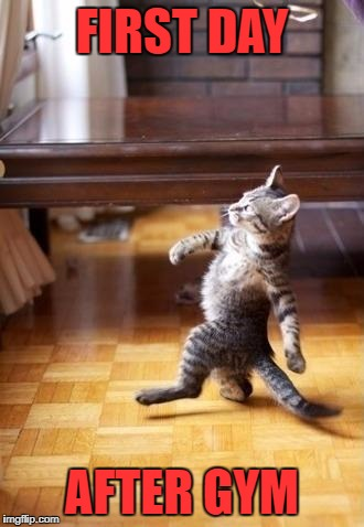 Cool Cat Stroll Meme | FIRST DAY AFTER GYM | image tagged in memes,cool cat stroll | made w/ Imgflip meme maker