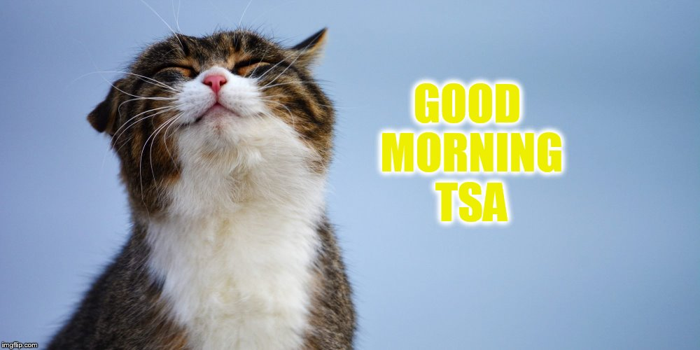 GOOD MORNING TSA | made w/ Imgflip meme maker