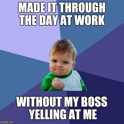 Success Kid Meme | MADE IT THROUGH THE DAY AT WORK WITHOUT MY BOSS YELLING AT ME | image tagged in memes,success kid | made w/ Imgflip meme maker