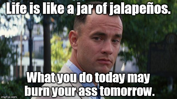 Yeah, that sounds about right. | Life is like a jar of jalapeños. What you do today may burn your ass tomorrow. | image tagged in forrest gump,memes | made w/ Imgflip meme maker