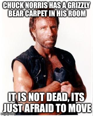 Chuck Norris Flex Meme | CHUCK NORRIS HAS A GRIZZLY BEAR CARPET IN HIS ROOM IT IS NOT DEAD, ITS JUST AFRAID TO MOVE | image tagged in memes,chuck norris flex,chuck norris | made w/ Imgflip meme maker