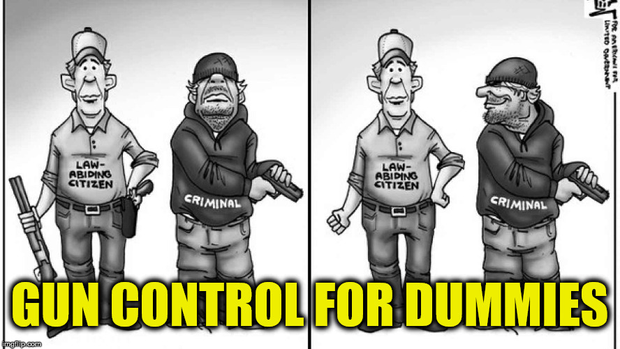 It's just common sense | GUN CONTROL FOR DUMMIES | image tagged in gun control | made w/ Imgflip meme maker