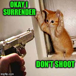 OKAY I SURRENDER DON'T SHOOT | made w/ Imgflip meme maker