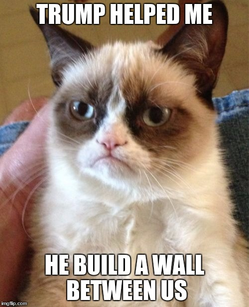 ... i wonder if it's true ... | TRUMP HELPED ME HE BUILD A WALL BETWEEN US | image tagged in memes,grumpy cat | made w/ Imgflip meme maker