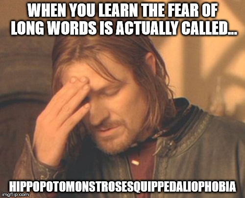 Hippopotomonstrosesquippedaliophobia is a real word! | WHEN YOU LEARN THE FEAR OF LONG WORDS IS ACTUALLY CALLED... HIPPOPOTOMONSTROSESQUIPPEDALIOPHOBIA | image tagged in memes,frustrated boromir,words,phobia,the truth | made w/ Imgflip meme maker