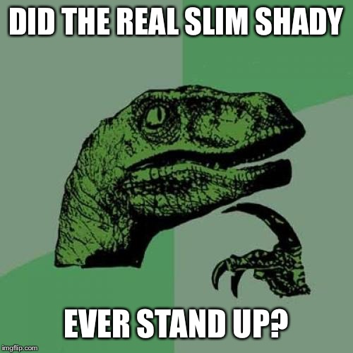Philosoraptor Meme | DID THE REAL SLIM SHADY EVER STAND UP? | image tagged in memes,philosoraptor | made w/ Imgflip meme maker