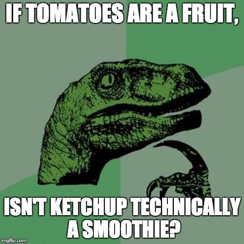 Philosoraptor Meme | IF TOMATOES ARE A FRUIT, ISN'T KETCHUP TECHNICALLY A SMOOTHIE? | image tagged in memes,philosoraptor | made w/ Imgflip meme maker