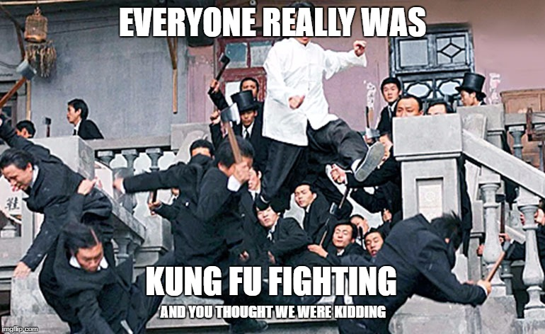 They really were | EVERYONE REALLY WAS KUNG FU FIGHTING AND YOU THOUGHT WE WERE KIDDING | image tagged in kung fu,fighting | made w/ Imgflip meme maker