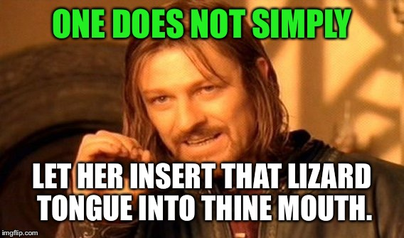 One Does Not Simply Meme | ONE DOES NOT SIMPLY LET HER INSERT THAT LIZARD TONGUE INTO THINE MOUTH. | image tagged in memes,one does not simply | made w/ Imgflip meme maker