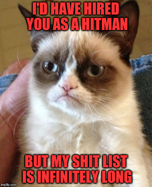 Grumpy Cat Meme | I'D HAVE HIRED YOU AS A HITMAN BUT MY SHIT LIST IS INFINITELY LONG | image tagged in memes,grumpy cat | made w/ Imgflip meme maker