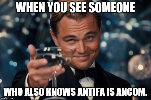 Leonardo Dicaprio Cheers Meme | WHEN YOU SEE SOMEONE WHO ALSO KNOWS ANTIFA IS ANCOM. | image tagged in memes,leonardo dicaprio cheers | made w/ Imgflip meme maker