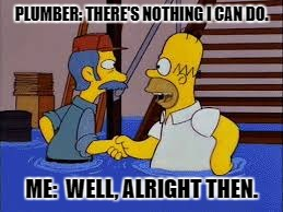 My Life | PLUMBER: THERE'S NOTHING I CAN DO. ME:  WELL, ALRIGHT THEN. | image tagged in simpsons | made w/ Imgflip meme maker