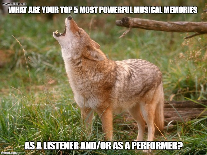 coyote howls | WHAT ARE YOUR TOP 5 MOST POWERFUL MUSICAL MEMORIES AS A LISTENER AND/OR AS A PERFORMER? | image tagged in coyote howls | made w/ Imgflip meme maker