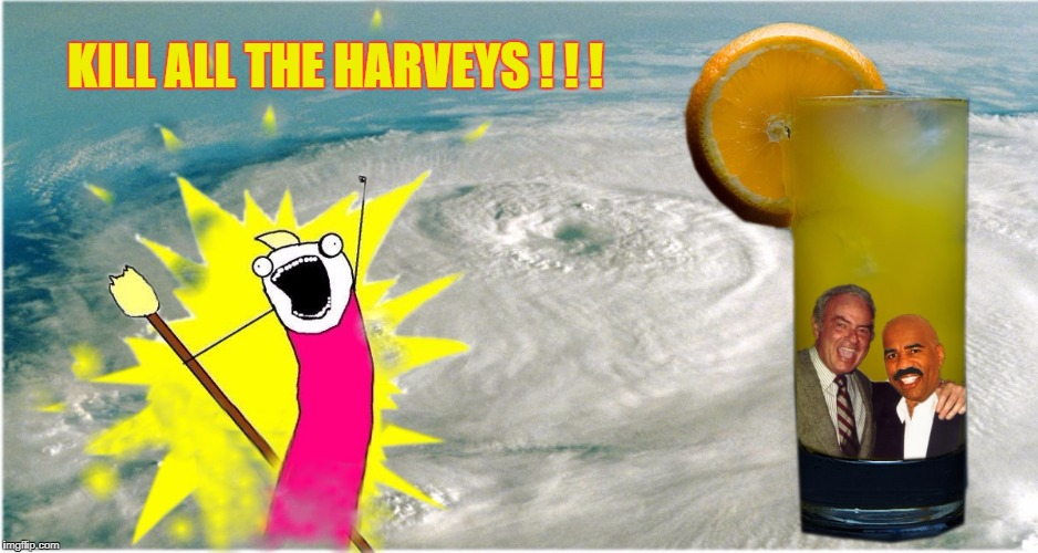 "Kill ""Hurricane Steve Harvey Korman Wallbanger..."" 