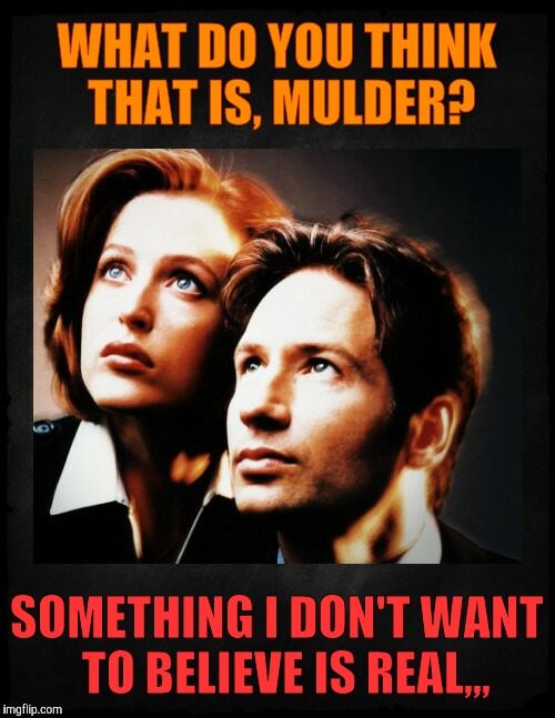 Mulder and Scully gaze to whatever,,, | WHAT DO YOU THINK THAT IS, MULDER? SOMETHING I DON'T WANT  TO BELIEVE IS REAL,,, | image tagged in mulder and scully gaze to whatever | made w/ Imgflip meme maker