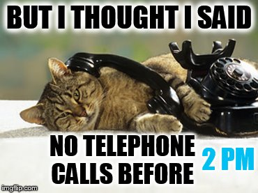No Calls Before 2 pm Please | BUT I THOUGHT I SAID NO TELEPHONE CALLS BEFORE 2 PM | image tagged in memes,cat memes,no phone,before,2 pm | made w/ Imgflip meme maker