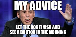 all the times | MY ADVICE LET THE DOG FINISH AND SEE A DOCTOR IN THE MORNING | image tagged in all the times | made w/ Imgflip meme maker
