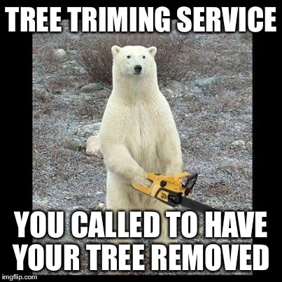 Chainsaw Bear Meme | TREE TRIMING SERVICE YOU CALLED TO HAVE YOUR TREE REMOVED | image tagged in memes,chainsaw bear | made w/ Imgflip meme maker