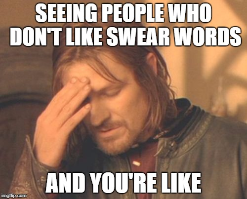 Frustrated Boromir Meme | SEEING PEOPLE WHO DON'T LIKE SWEAR WORDS AND YOU'RE LIKE | image tagged in memes,frustrated boromir | made w/ Imgflip meme maker