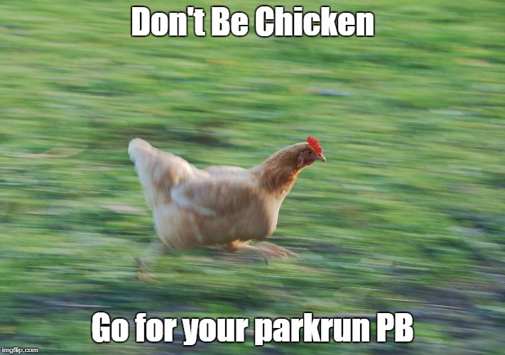 Don't Be Chicken Go for your parkrun PB | image tagged in running chicken | made w/ Imgflip meme maker
