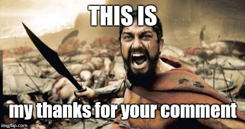 Sparta Leonidas Meme | THIS IS my thanks for your comment | image tagged in memes,sparta leonidas | made w/ Imgflip meme maker