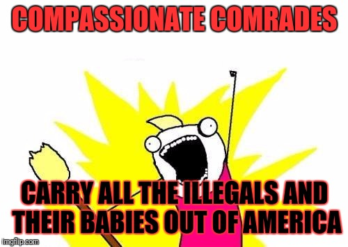 X All The Y Meme | COMPASSIONATE COMRADES CARRY ALL THE ILLEGALS AND THEIR BABIES OUT OF AMERICA | image tagged in memes,x all the y | made w/ Imgflip meme maker
