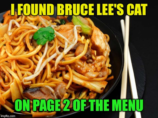 I FOUND BRUCE LEE'S CAT ON PAGE 2 OF THE MENU | made w/ Imgflip meme maker