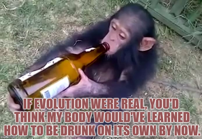 Monkey on booze | IF EVOLUTION WERE REAL, YOU'D THINK MY BODY WOULD'VE LEARNED HOW TO BE DRUNK ON ITS OWN BY NOW. | image tagged in evolution,church,memes,funny,funny memes,hysterical | made w/ Imgflip meme maker