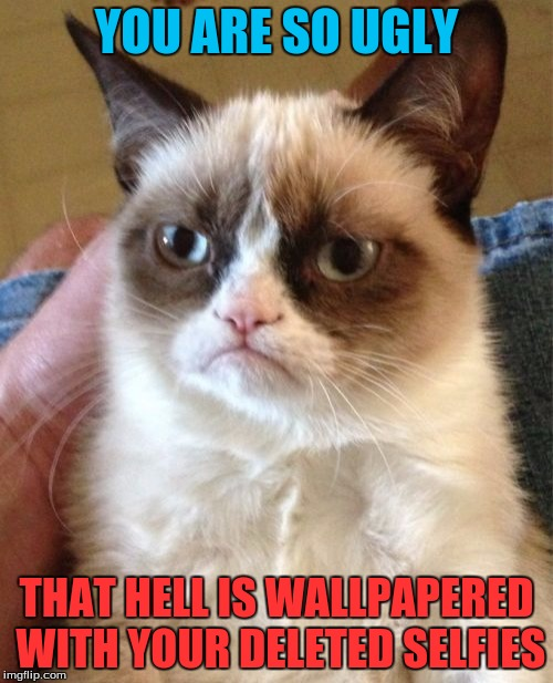 Grumpy Cat Meme | YOU ARE SO UGLY THAT HELL IS WALLPAPERED WITH YOUR DELETED SELFIES | image tagged in memes,grumpy cat,funny | made w/ Imgflip meme maker