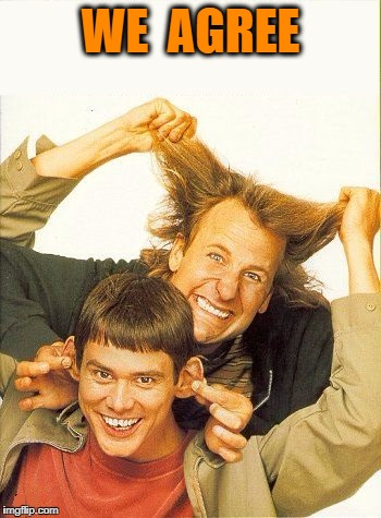 DUMB and dumber | WE  AGREE | image tagged in dumb and dumber | made w/ Imgflip meme maker