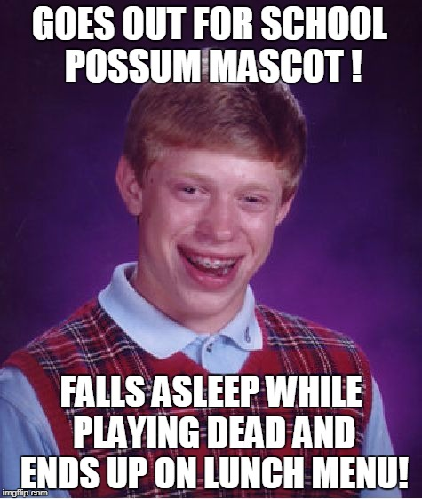 Possum Stew |  GOES OUT FOR SCHOOL POSSUM MASCOT ! FALLS ASLEEP WHILE PLAYING DEAD AND ENDS UP ON LUNCH MENU! | image tagged in memes,bad luck brian,possum | made w/ Imgflip meme maker